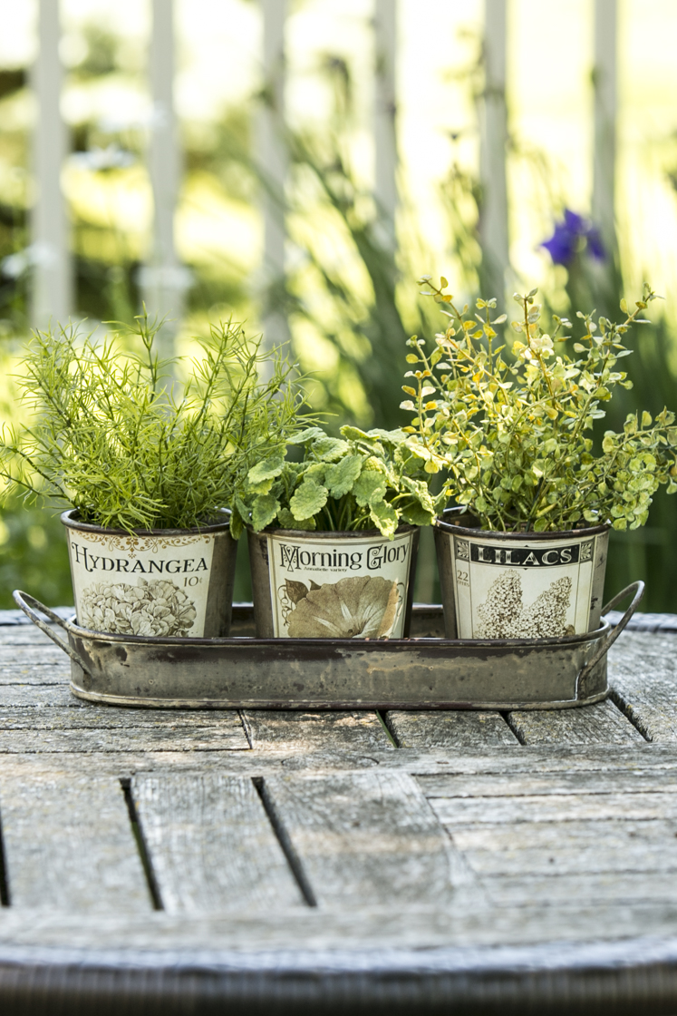 pictures of vintage herb gardens | Herb Pots & Tray | Heritage Lace
